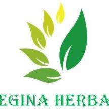 Logo Regina Herbal Tasik