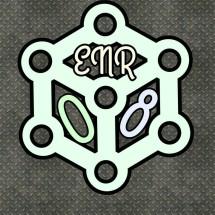 ENR08