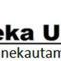 Logo Aneka Utama Indah