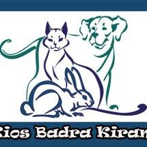 Logo KIOS BADRA KIRANA