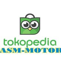 Logo ASM-MOTOR