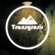 Logo transgrosir