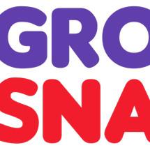 Logo Grosir Snack's