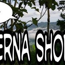 Erna shops