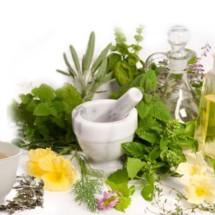 toko herbal anisa