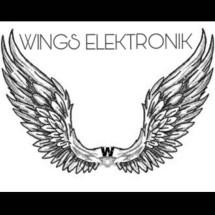 Logo Wings Elektronik