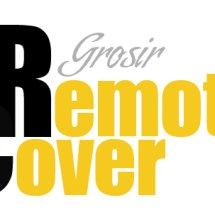 Logo Remote Cover Grosir