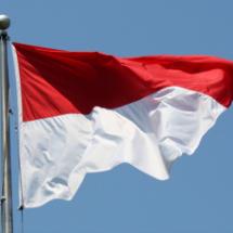 Logo Bendera Indonesia 45