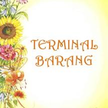 Logo Terminal Barang