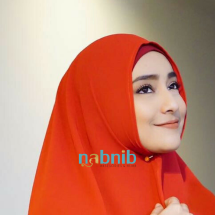 Logo Nabnib_home