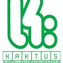 Logo KagedStore