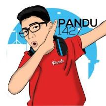 Pandu1427