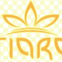 Logo The Tiara Olshop