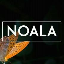 NOALA - Mom & Kids Store