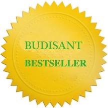 Logo budisant