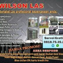 Wilson Elektrik