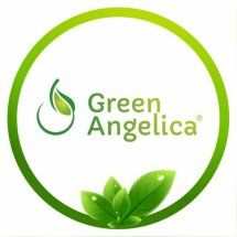 Green Angelica Haircare