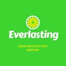 Logo Everlastings8