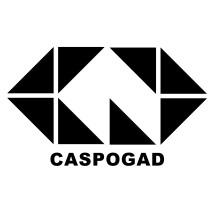 Logo Caspogadstore