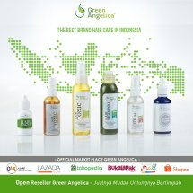 Logo Green Angelica OS