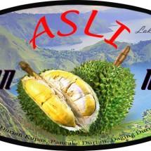 Logo ucok. durian