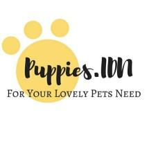 Logo Puppies IDN