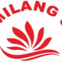 Logo Gemilang 888