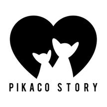 Pikaco Story
