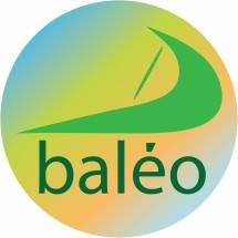 BALEO STORE Logo