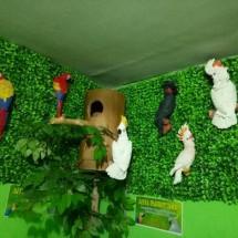 Aliya Parrot Shop