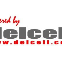 Logo TOKO DELCELL