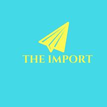 Logo The Import