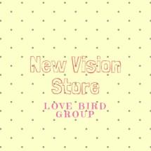 Logo New Vision Store