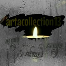 artacollection13