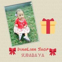 DianLina Shop