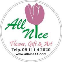 All Nice Logo