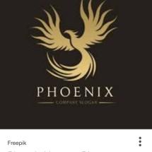 PHOENIX 23 Logo