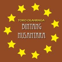 Logo Bintang Nusantara