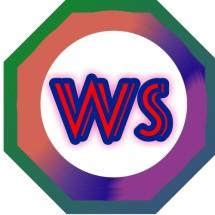 Logo Wiliam store