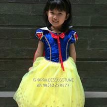 Logo Princess Costume