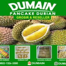 Logo Dumain