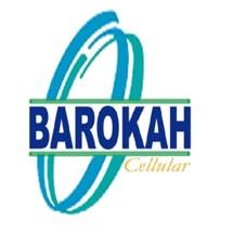 Logo BRK Network