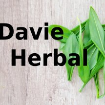 Logo Davie