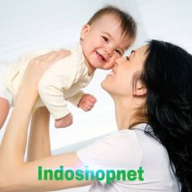 Logo Indoshopnet