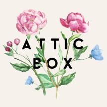 attic box