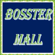 Logo Bosster Mall