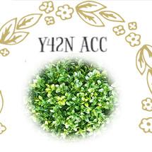 logo_yayanacc