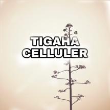 Logo Tigaha Celluler