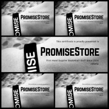 Logo PromiseStore