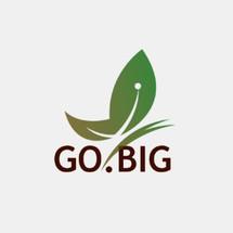 Logo Go-Big